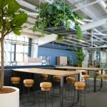 design végétal et Plantes suspendues