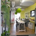 boules suspendues stabilisées et design végétal